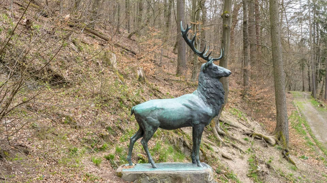 Hirschdenkmal und Lutherbuche: Wandern um Stolberg (Harz)